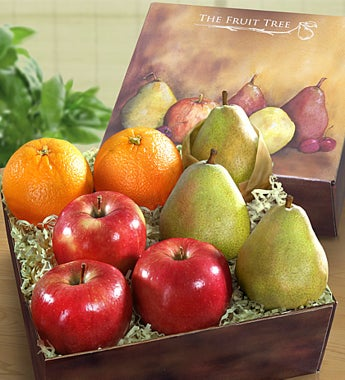 Arbor Harvest Fruit Sampler Box - Gluten Free - Gift Basket Delivery