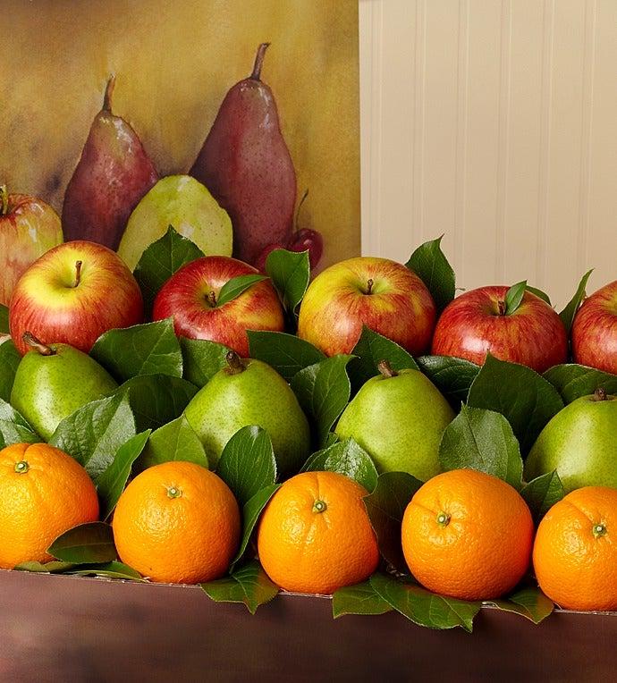 Arbor Harvest Supreme Fruit Box  gluten free