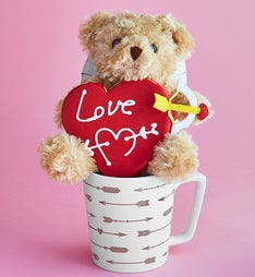 Follow your Heart Mug & Bear Gift