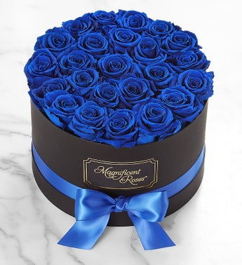 Magnificent Roses Preserved  Blue Velvet Roses