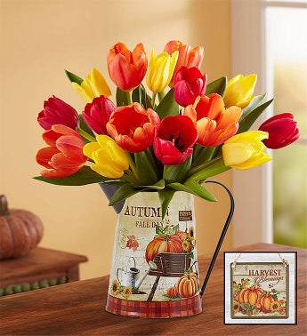 Country Harvest Tulips