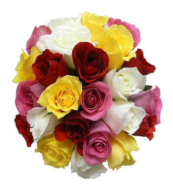 Colorful Roses - Medium