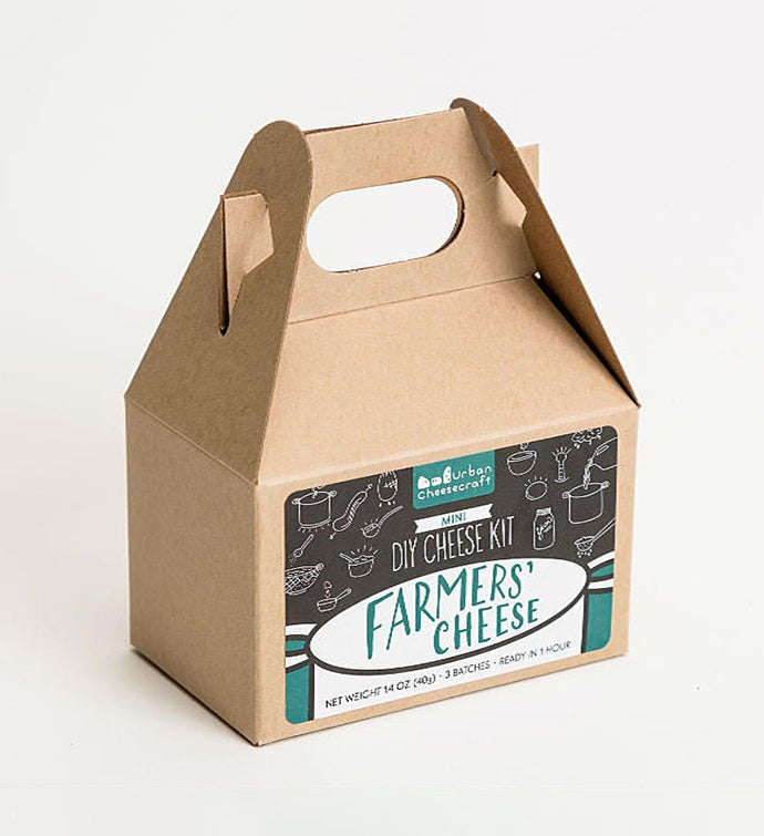 Mini Farmers Cheese Kit